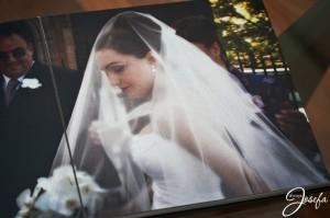 Bride, veil, wedding day