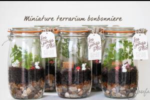 Miniature terrarium bonbonniere